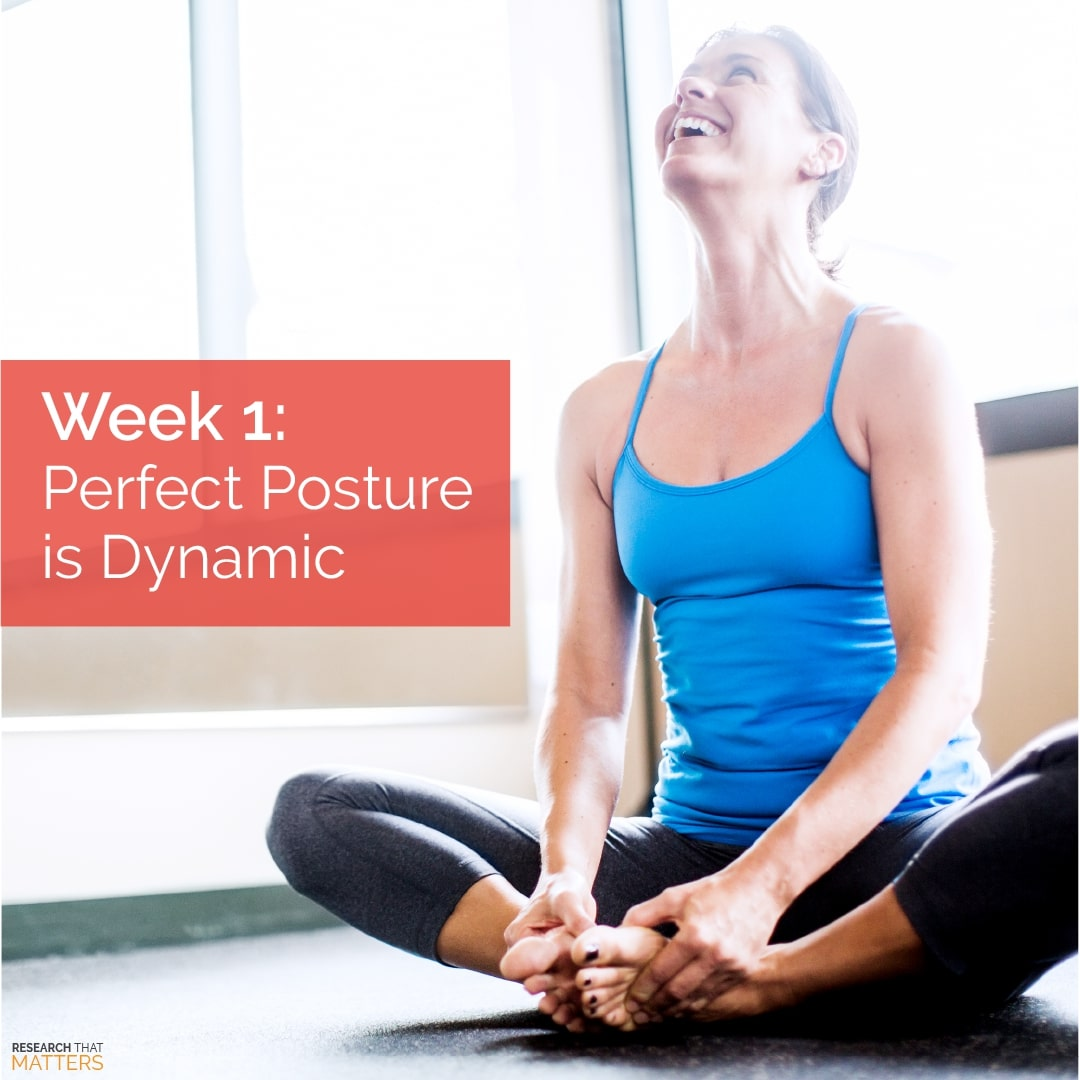 You are currently viewing Perfect Posture is Dynamic